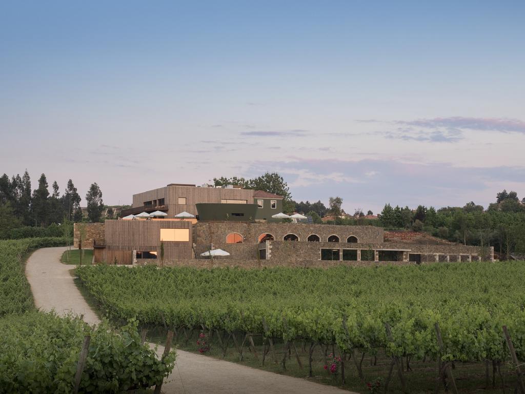 monverde-wine-experience 2784