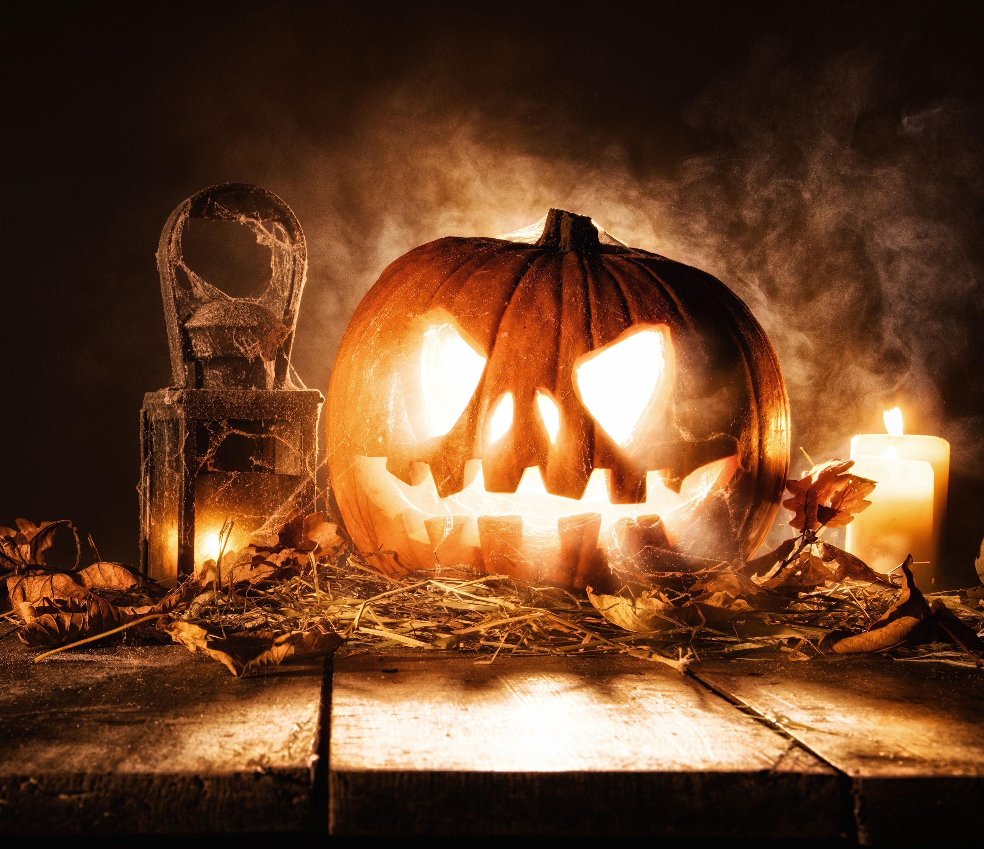 halloween 507