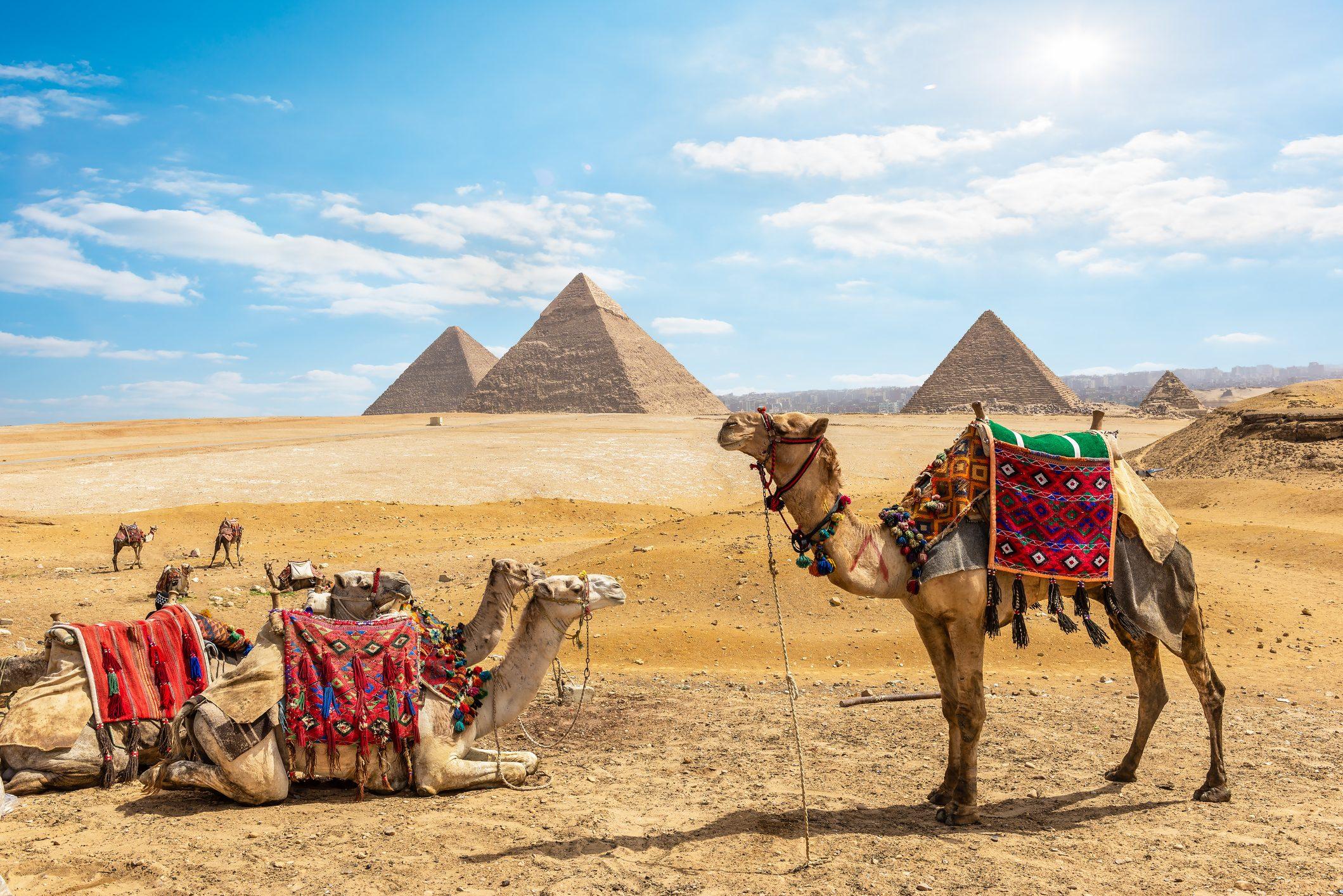 egipto 5591